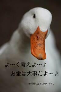 画像はイメージです。